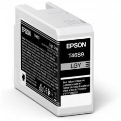 Cartouche d'encre EPSON Gris clair T46S9 25 ml