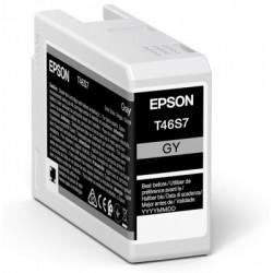 Cartouche d'encre EPSON Gris T46S7 25 ml
