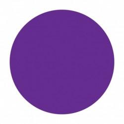 Cartouche d'encre CANON PFI-2700VI  Violet  700 ml